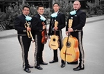 Mariachi Contemporary
